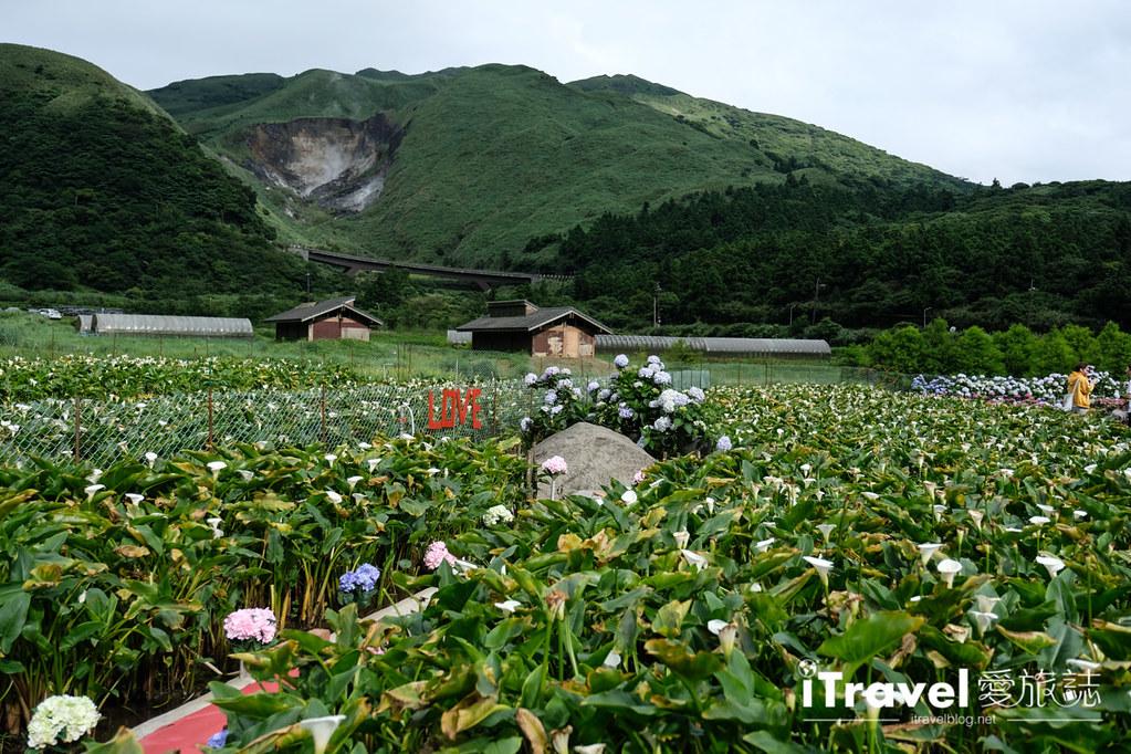 頂湖財福繡球花園 Jai Fu Garden (90)