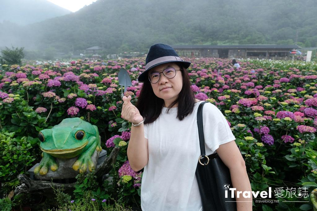 頂湖財福繡球花園 Jai Fu Garden (36)