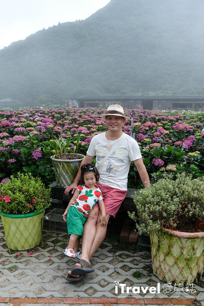 頂湖財福繡球花園 Jai Fu Garden (34)