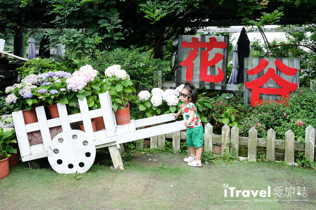 頂湖財福繡球花園 Jai Fu Garden (11)