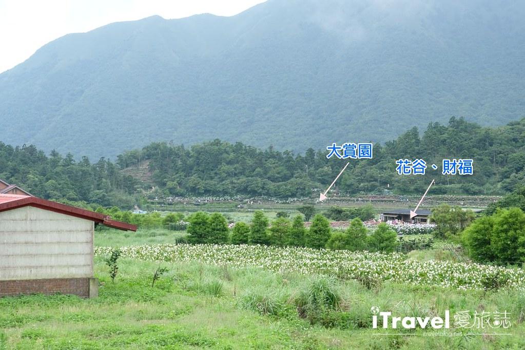 頂湖財福繡球花園 Jai Fu Garden (7)
