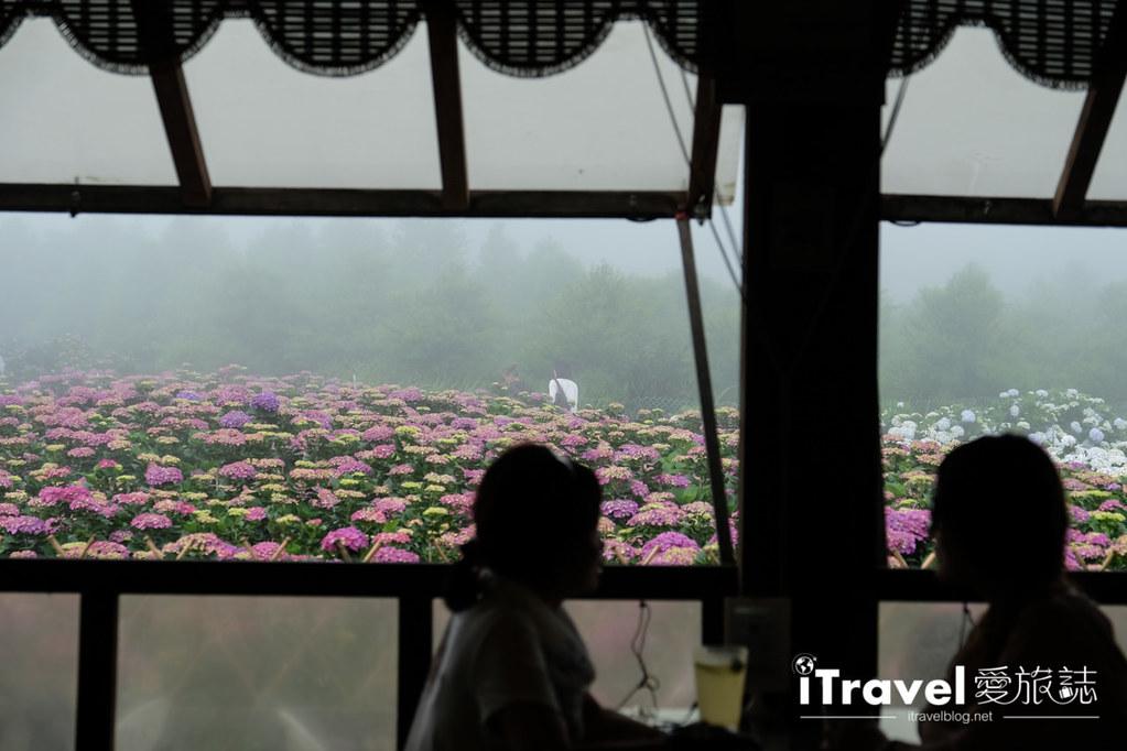 頂湖財福繡球花園 Jai Fu Garden (78)