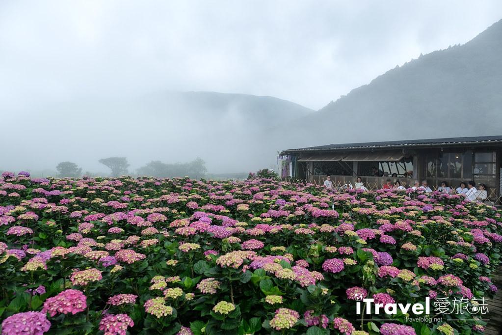 頂湖財福繡球花園 Jai Fu Garden (30)