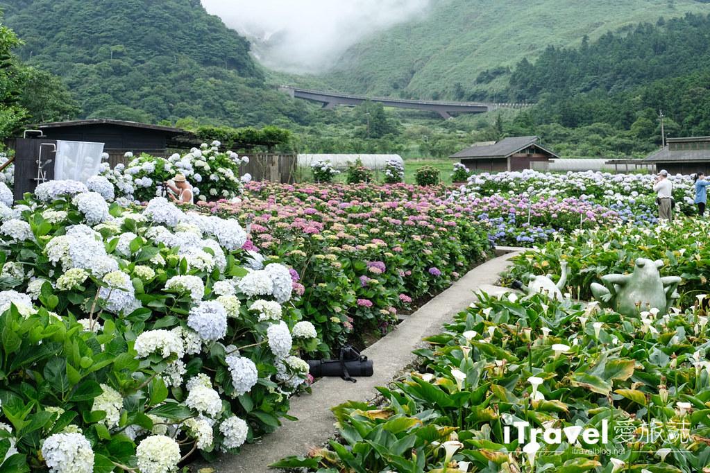 頂湖財福繡球花園 Jai Fu Garden (12)