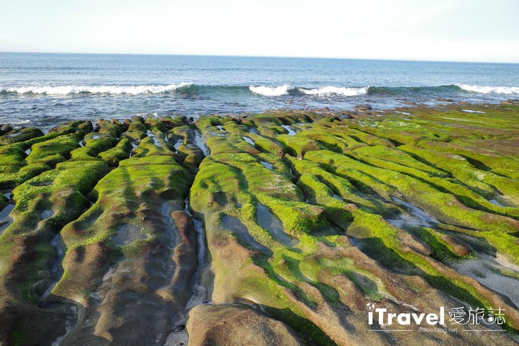 老梅綠石槽 Green Reef at Laomei (9)