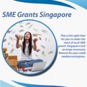 SME Singapore Grant