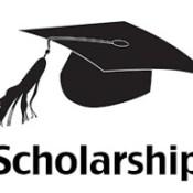 Dr APJ Abdul Kalam Global Skills Scholarship
