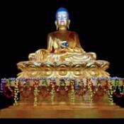 India - Sikkim - Ralang - Palchen Choeling Monastic Institut (Ralang Monastery) - Sitting Buddha - 19d
