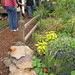 Mixed pathside plantings of ornamentals and edibles @ Sunset Magazine Trial Gardens