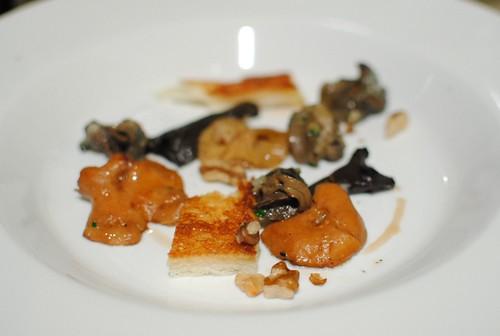 snail mushrooms