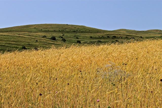 Contraste de la vallée, Vayots Dzor, Arménie