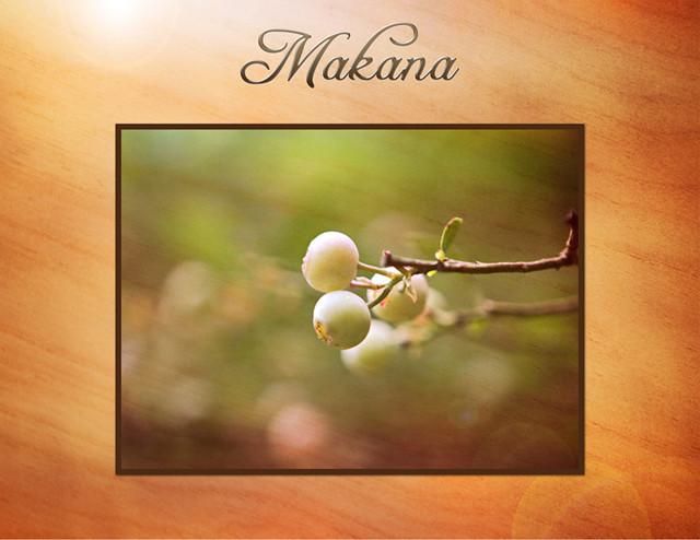 Makana berries 720