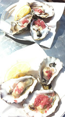 IMG_0076b_Oysters_from_ThamesEstuary_JerseyOcean