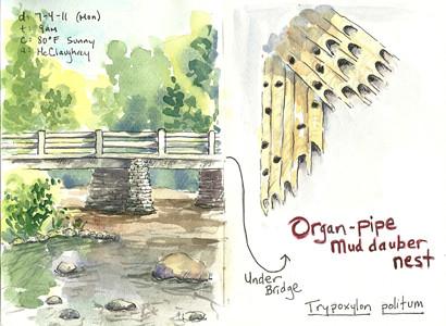 20110704_organpipe_sketch1