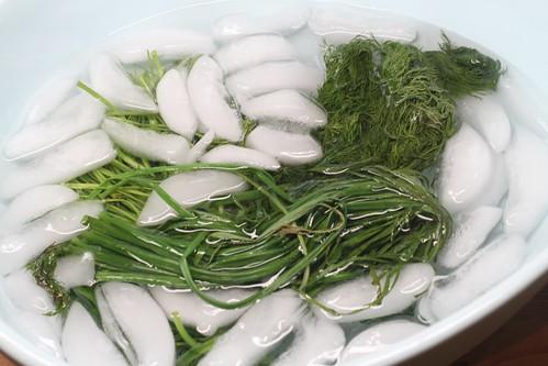 ice bath
