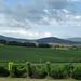 Da qualche parte in Toscana!