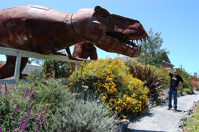Rusty Tyrannosaurus rex.