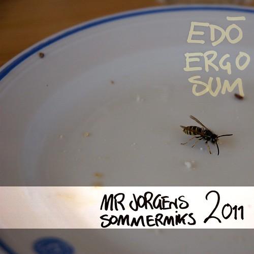 Mr Jorgen presenterer Edo Ergo Sum (Sommermiks 2011)