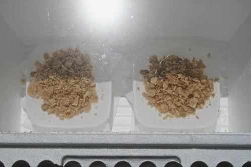 Wax in Solar Wax Melter