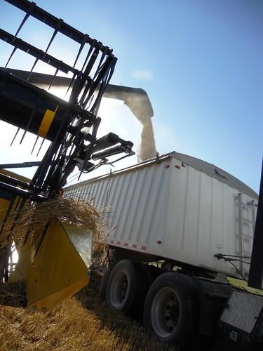 Combine unloading