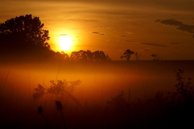 Sunrise 070311 2