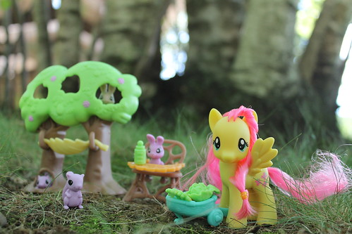 Friendship is Magic Fluttershy