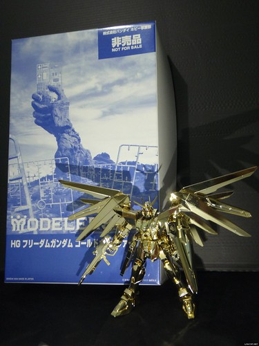 HG 2004 Freedom {Gold # Modelers Cup} (2)