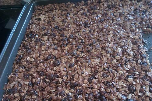 Granola Bar with raisins and molasses