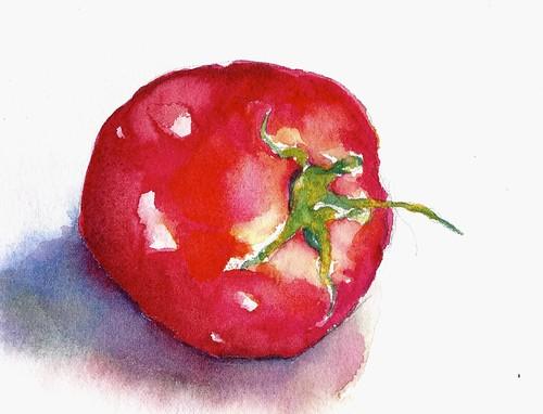 Garden Tomato- Take 2