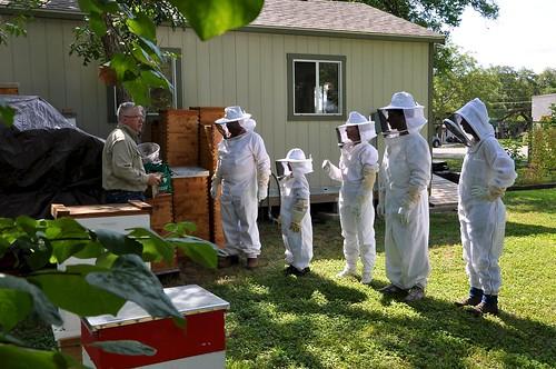 Explore the hive 4