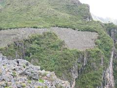 2004_Machu_Picchu 85
