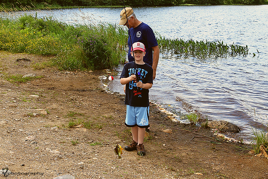 Catch and Release: Sunfish