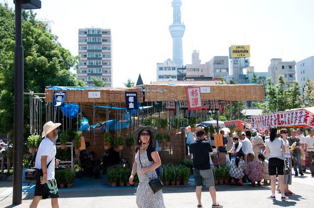 浅草寺_ほおずき市