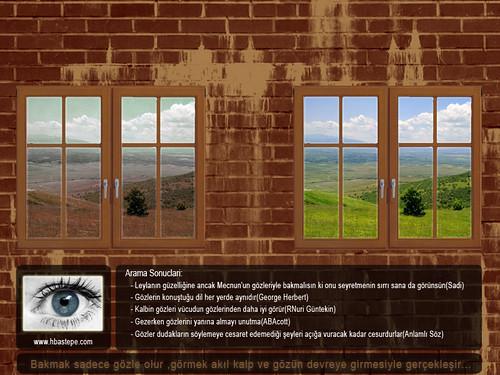 Bakmak ve Görmek by Bastepe