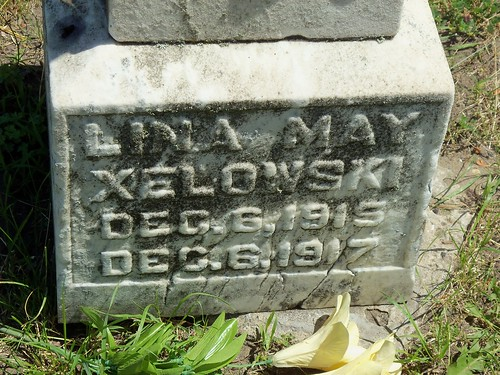 Xelowski (3)