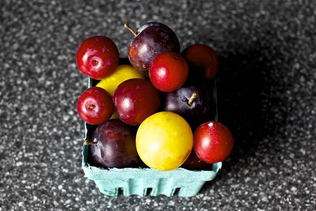 pom-pom plums