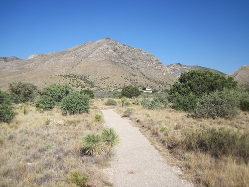 Picture from the Guadalupe Mountains