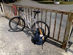 baguette_transportation