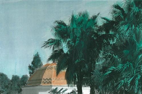 Desert Oasis by olmjohns