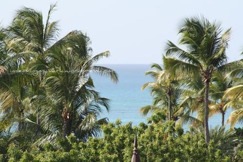 WM Antigua 13