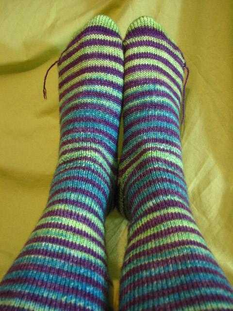 Darner Dragonfly Socks - Safari Fille of Sole