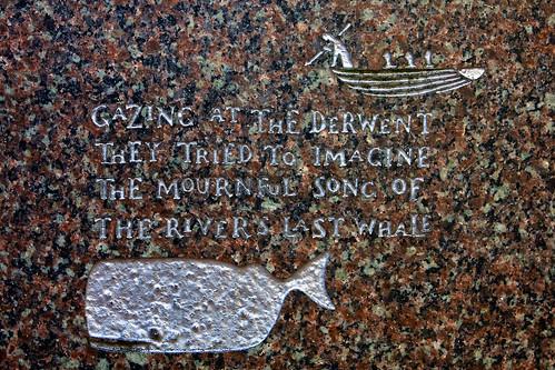 Derwent Whale