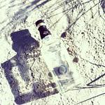 Beach Daniels