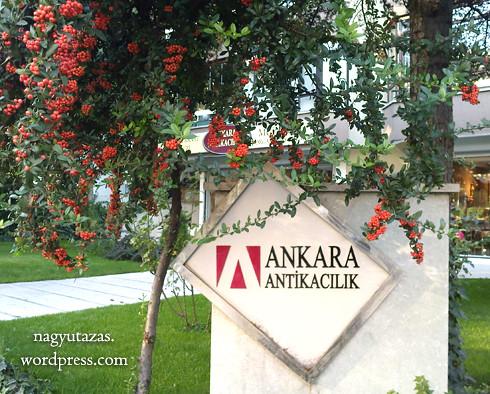 Az Adobe logó büszkén képviseli az egyik ankarai régiségboltot