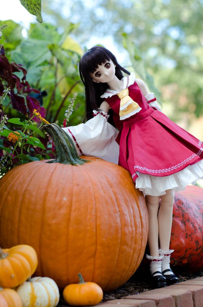 Reimu looks for Fall