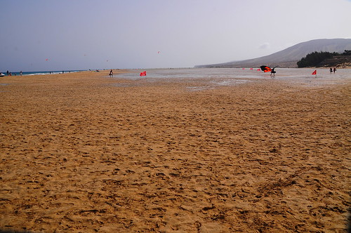 Chapter 5 - Fuerteventura, the calm and the wildness (#10): Walkabout