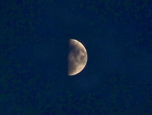 Half Moon by WETCLOUD