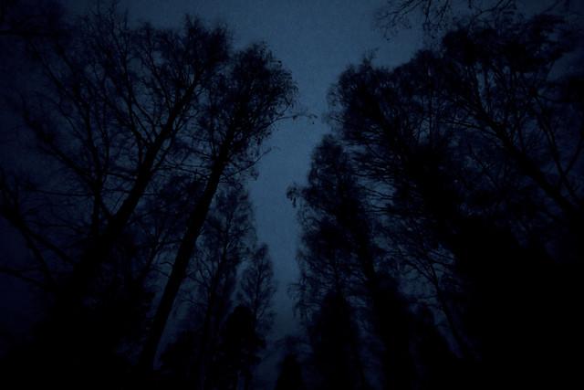 Høst, det er mørkt. (5/6)