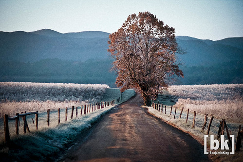 Hyatt Lane, Cades Cove by benjaminking1