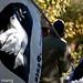Occupy Santa Fe-7.jpg